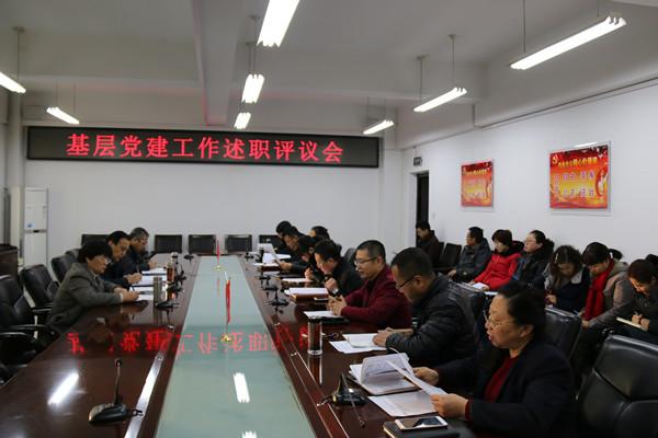 我院组织召开基层党组织书记述职评议会